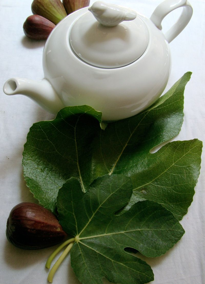 Fig Leaf Tea