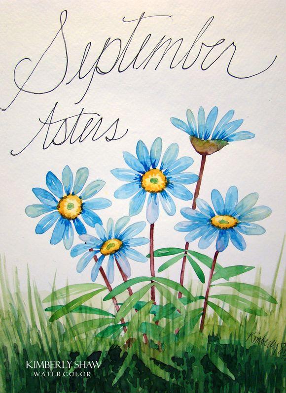 Sept Aster